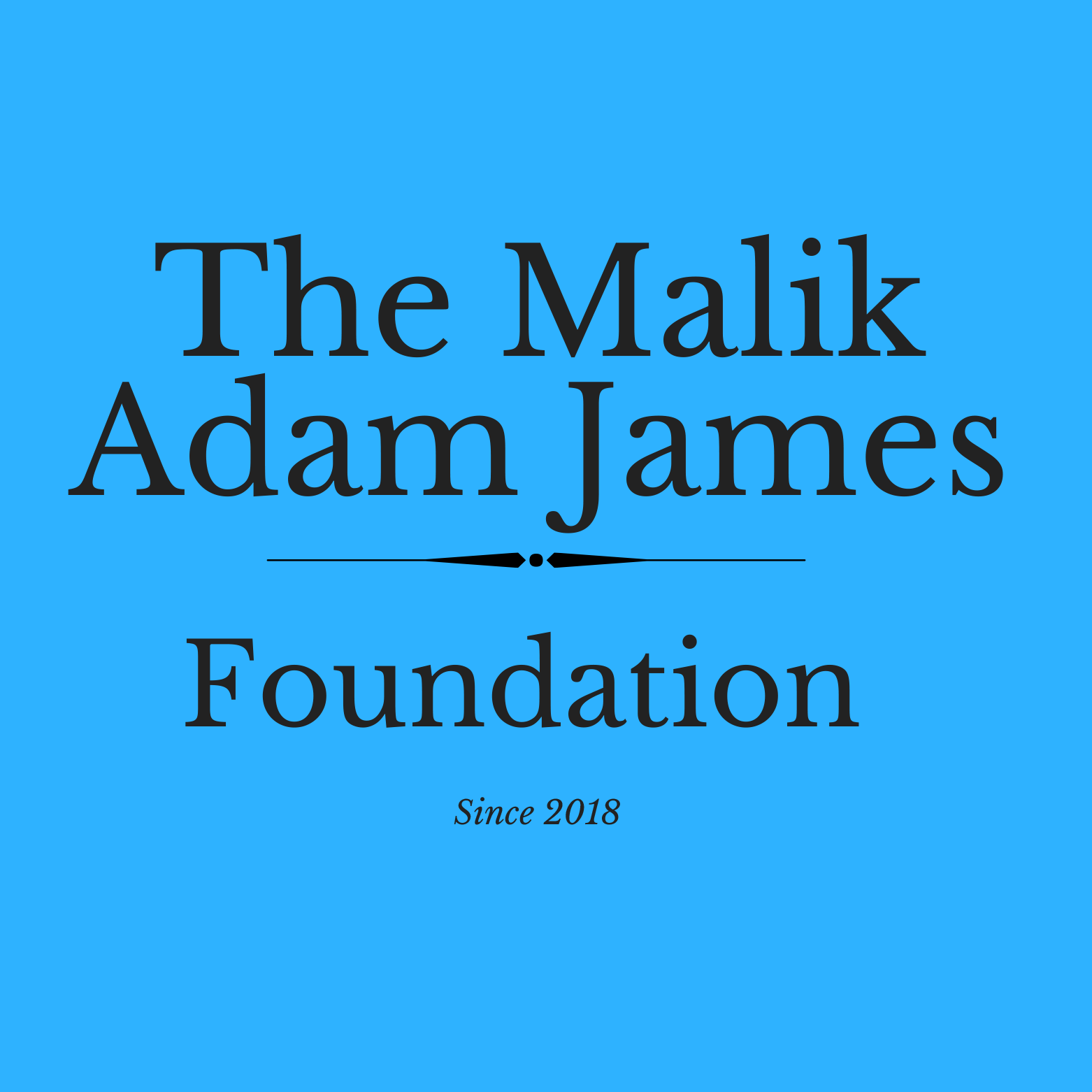 The Malik Adam James Foundation